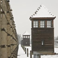 Jewish Leader Questioned By Police After Trapped In Auschwitz