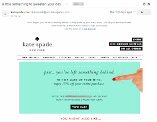 How Businesses Can Leverage Online Identity to Boost ROI image katespade checkout
