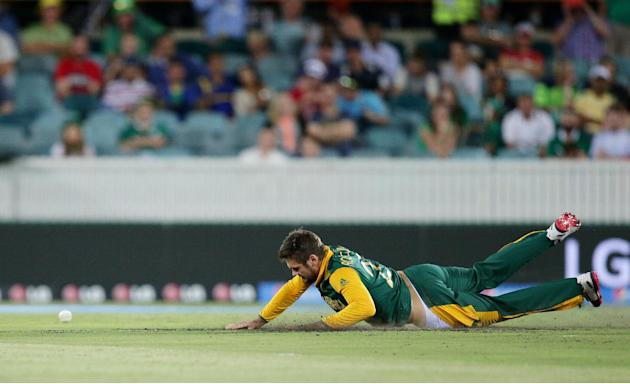 South Africa's Rilee Rossouw dives to field the ball during their Cricket World Cup Pool B match Ireland in Canberra, Australia, Tuesday, March 3, 2015. (AP Photo/Rob Griffith)