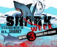 Shark Week Sparks Debate About Shark Finning On Social Media image shark 300x245