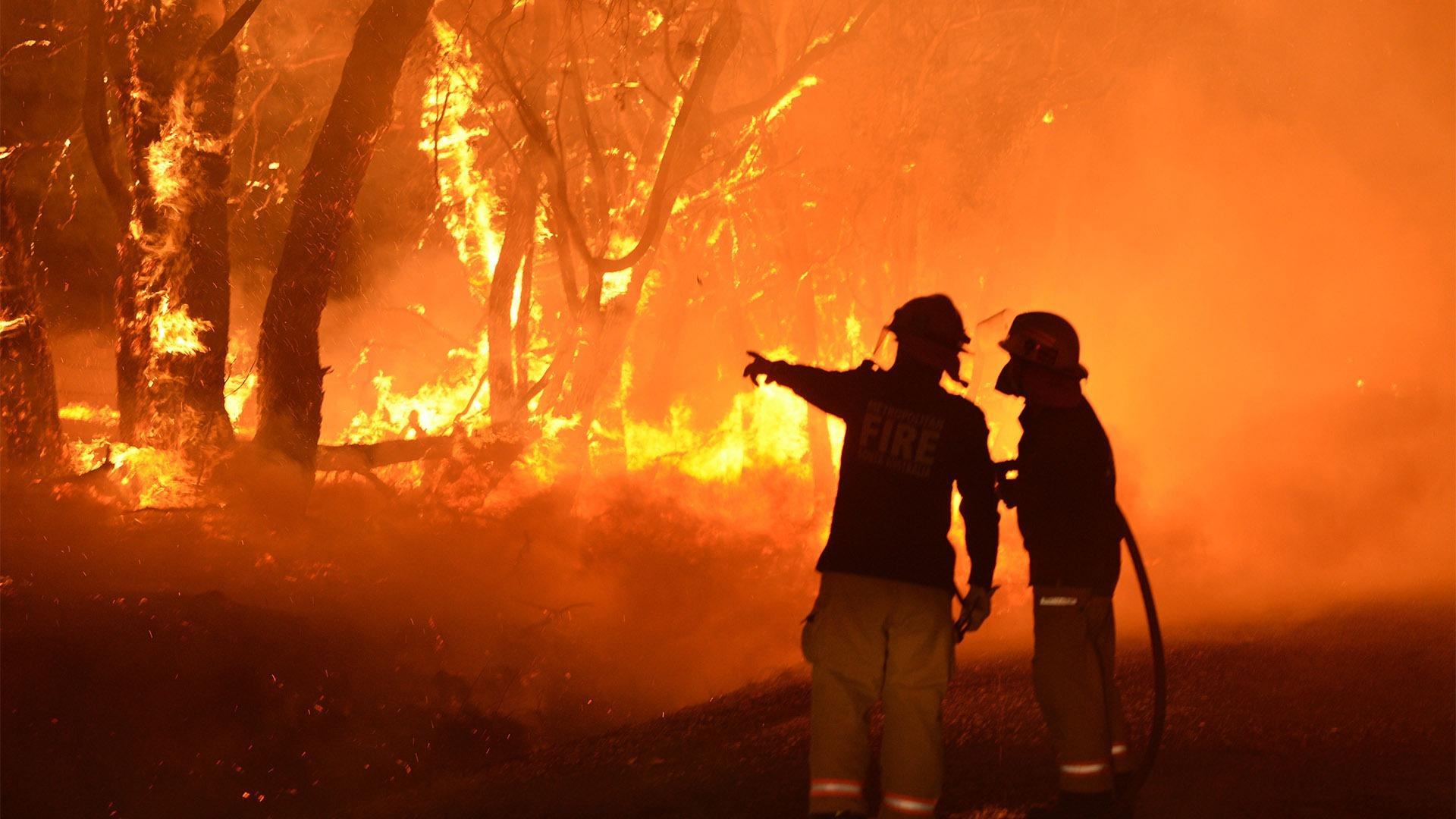 Nearly 3,000 climate scientists condemn Australia's dramatic research cuts