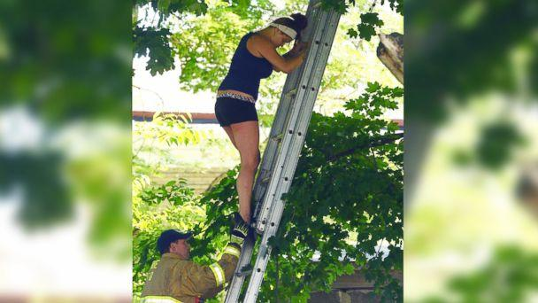 Woman Climbs Tree to Rescue Cat, Gets Stuck Herself