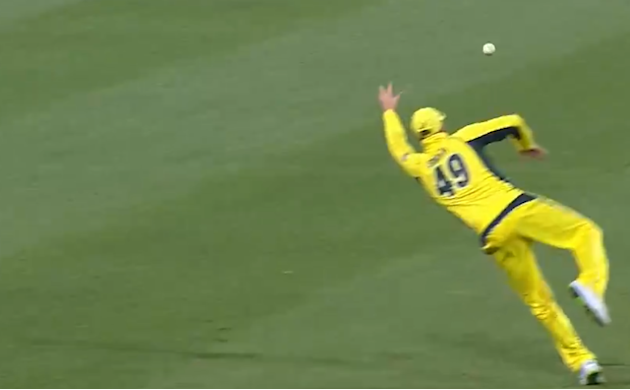 This flying, left-handed cricket catch is out of control