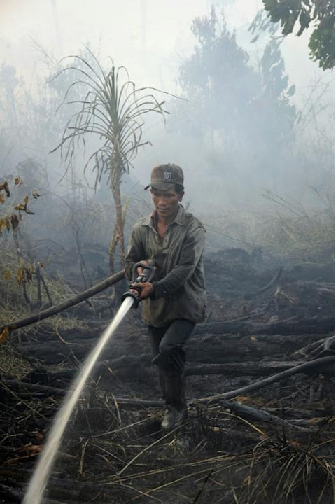 A palm oil concession worker extinguishes a forest fire in Kampar district, Riau province on Sumatra island on June 29, 2013