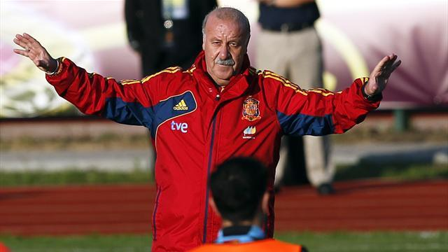 Crisis-hit Spain looks to Del Bosque