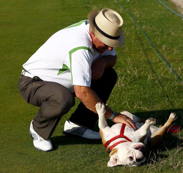 ST ANDREWS, SCOTLAND - SEPTEMBER 28:  Sir Ian Botham plays with a bulldog during the final practice round of The Alfred Dunhill Links Championship at The Old Course on September 28, 2011 in St Andrews