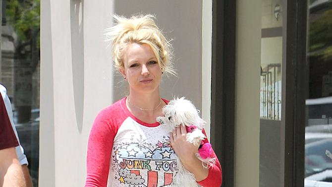 Britney Spears and boyfriend David Lucado take her puppy Hannah on a shopping trip to a Sports Authority in Los Angeles