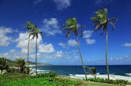 Barbados has been selected as one of ten ethical destinations to visit in 2013