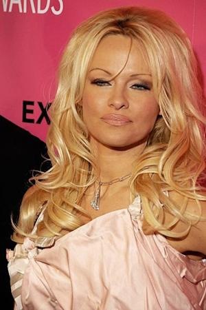 Pamela Anderson Vs. Bristol Palin & Nicki Minaj Vs. Mariah Carey - Comparing the Rumored Feuds