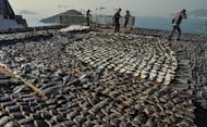 """Shark fins drying in the sun cover the roof of a factory building in Hong Kong on January 2, 2013. The images have provoked outrage, prompting environmentalists to call for curbs on what they describe as a """"barbaric"""" trade"""