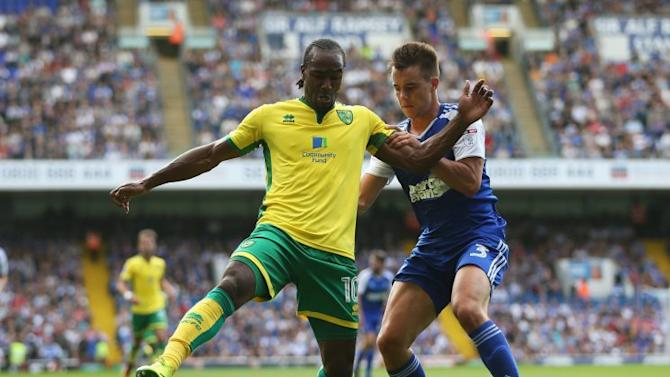Norwich City Fan View: Play-off hopes fading fast