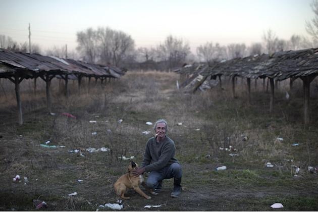 In this photo taken Tuesday, Feb. 17, 2015,  a local man that helps migrants by sharing his food and cigarettes with them pets a stray dog on the outskirts of Subotica, 150 kilometers north of Belgrad