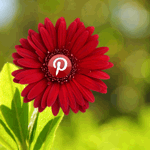 8 Ways To Get More Pinterest Followers image get more pinterest followers