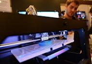 Visitors look at a 3D printer printing an object during an exhibition in New York on April 22, 2013. Computer files to create a handgun almost entirely from parts made with a 3D printer went online Monday, alarming gun control advocates after it was successfully test-fired by its inventor