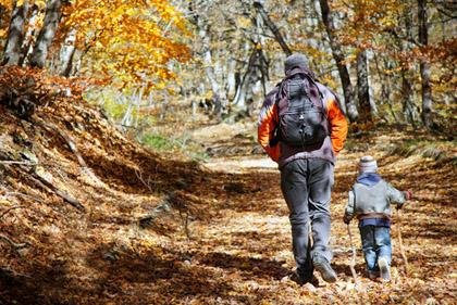Take a fall color hike