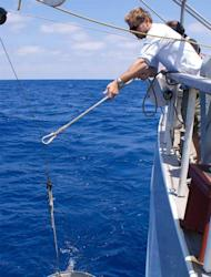 Giora Proskurowski deploys a net collect samples that help estimate how much plastic debris is in the ocean.