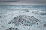 An iceberg, likely from Greenland's Jakobshavn Isbrae glacier, floats among sea ice.