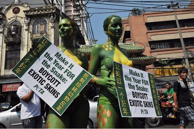 PETA activists shed clothes in Year of Snake protest