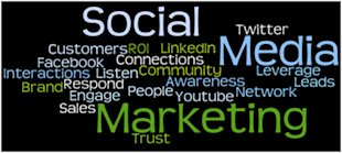Increase The Efficacy of Your Social Media Marketing Plan image social media marketing banner