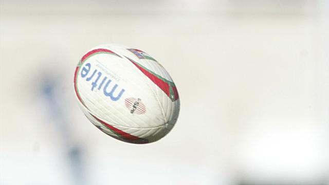 Rugby - Van Zyl double lays platform for Cheetahs win