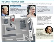 Plan of Oscar Pistorius's house, where the fatal shooting of his girlfriend Reeva Steenkamp took place on February 14. South African Paralympic icon and murder suspect Pistorius on Saturday said he was thankful for prayers offered to his family and that of his slain girlfriend, a day after he was freed on bail