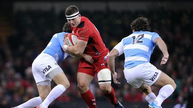 Rugby - Injuries dampen Welsh celebrations