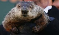 Groundhog Day: Did Phil See His Shadow?