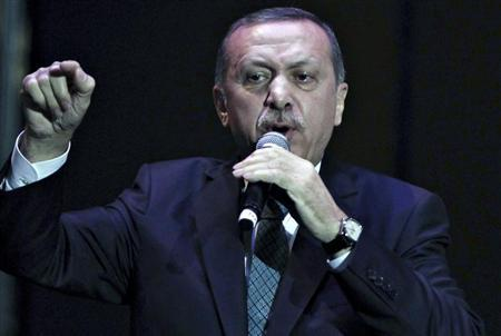 Turkey's Prime Minister Tayyip Erdogan addresses a meeting in Istanbul January 17, 2014. REUTERS/Osman Orsal