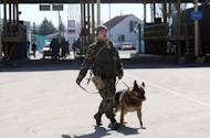 Ukrainian border guard patrols with his dog at the Uspenka check point on the border between Ukraine and Russia, some 120 km from the eastern city of Donetsk on March 21, 2014