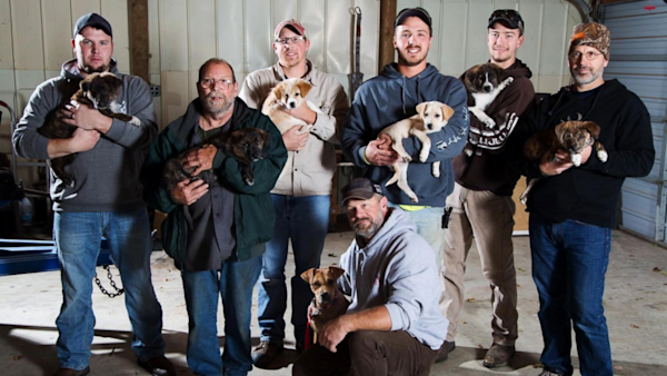 Bachelor party turns into puppy rescue mission yahoo for Cabin bachelor party