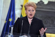 Lithuania's President Dalia Grybauskaite gives a press conference in Athens on December 11, 2013