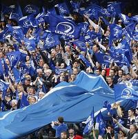 Leinster fans celebrate