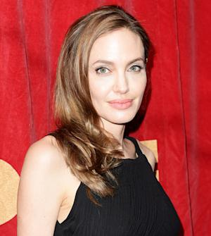 Angelina Jolie Banned From Flying Personal Plane by FAA: Report