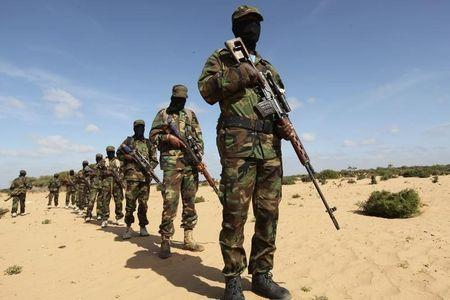 Members of Somalia's Al Shabaab militant group parade during a demonstration to announce their integration with al Qaeda, in Elasha, south of the capital Mogadishu