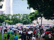 An estimated crowd of 4,000 show up in support of the protest at Hong Lim Park.