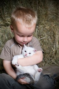 Boy and Kitten