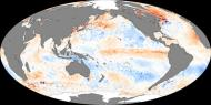 The warmer-than-average sea surface temperatures across the eastern Pacific Ocean that are the hallmark of an El Niño are clearly seen in this map of ocean temperatures taken by satellite in 2006. Redder spots are where tempeartures are warmer