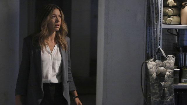 Natalie Zea Previews A Whole New Claire