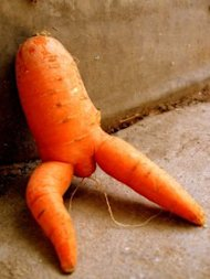 5 Reasons Why Being Humourous On Social Media Helps image funny carrot