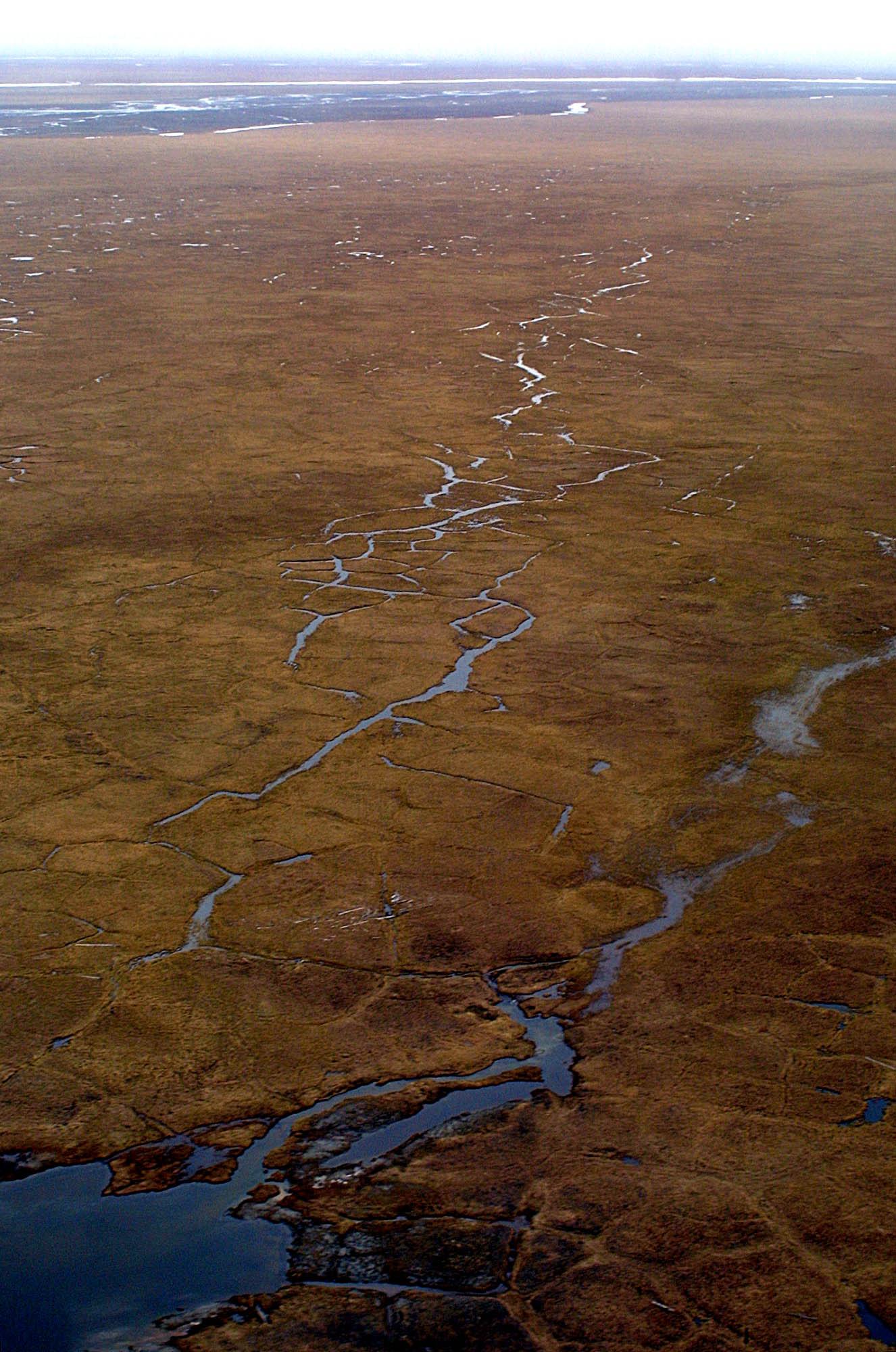 Obama seeks bigger wilderness designation in Alaska refuge