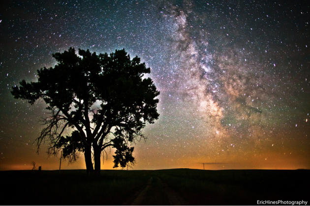 The Milky Way glows in this landscape with a silhouetted tree. (Photo: Eric Hines Photography/Flickr )