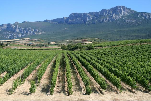 La Rioja Spain wine region
