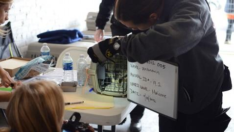 ASPCA Helps Hurricane Sandy Victims