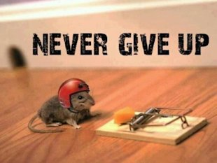 What Are You Doing to Keep Yourself on Track? image mouse with hard hat 400x300