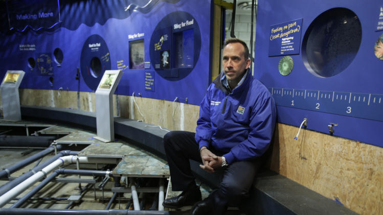 Director of the New York Aquarium, John Dohlin, poses for a picture at an exhibit ruined during Superstorm Sandy at the aquarium in Coney Island, New York, Monday, March 25, 2013.  (AP Photo/Seth Wenig)