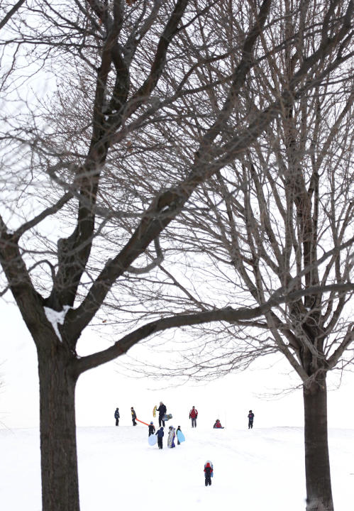 Sledding enthusiasts take to Cricket Hill at Montrose Beach Park Friday, Jan. 3, 2014, in Chicago. Single-digit temperatures are hitting Illinois after the state was blanketed in snow. Meanwhile, resi
