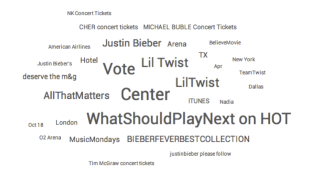 Who Are Beliebers, What Do They Have to Say & Why Do We Care? image bieber5