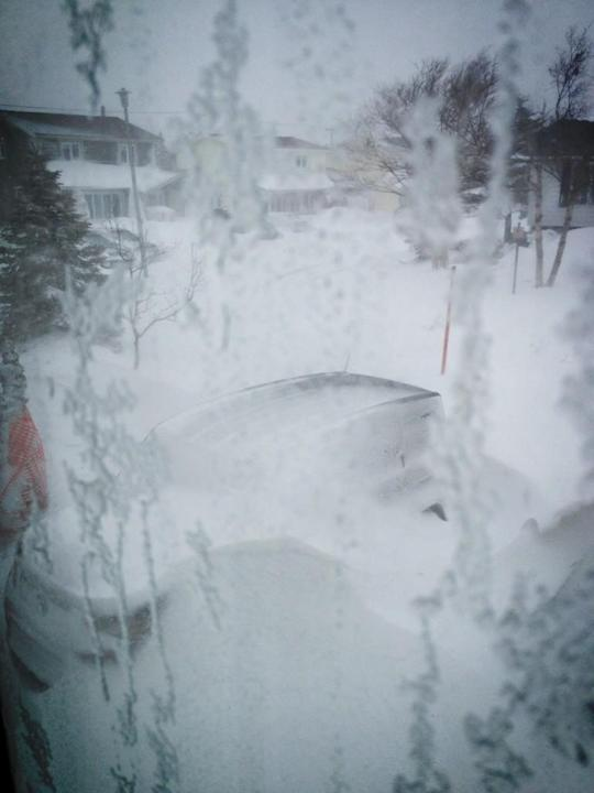 Winter came.. #NFLD #Blizzard @GameOfThrones pic.twitter.com/lRLNMkqQ