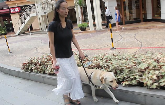 "Singaporean guide dog owner Cassandra Chiu said that she and a friend were ""refused"" service at McDonald's on Monday amid the retail chain's island-wide free breakfast promotion. (Yahoo photo)"