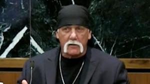 Hulk Hogan's Personal Life Discussed During Sex …